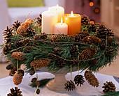 Kranz aus: Larix / Lärchenzweige und -zapfen, Pinus / Kiefernzweige und -zapfen,