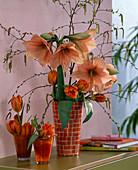 Hippeastrum / Amaryllis mit lachsfarbenen Blüten, Tulipa / Tulpen,