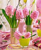 Hyacinthus (Hyazinthe)