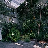 Ansicht eines Wintergarten
