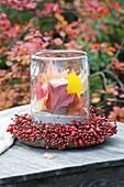 Windlicht mit bunten Blättern in Kranz aus Rosa (Hagebutten)