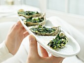 Baked oysters with spinach