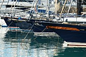 Boats in the harbour of Palma in Mallorca, Spain