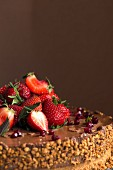 A chocolate cake topped with strawberries, pomegranate seeds and nuts