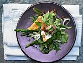 Rotbarbe auf Salat-Mix mit grünem Spargel und Fenchel