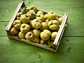 Quince on a tray