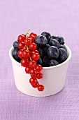 Red currants and blueberries in a ceramic bowl