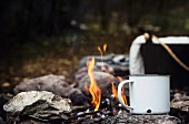 Picnic in the woods with a cup of tea close to the fire