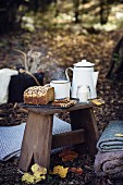 Picnic in the woods with a cup of tea and cereal bread