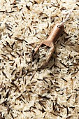 Weisser Reis und Wildreis mit Holzschaufel (Draufsicht)