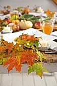 Gedeckter Tisch herbstlich dekoriert mit Laubblättern, Kürbissen und Äpfeln
