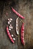 Three Pods of Borlotti Beans
