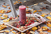 A candle, walnuts, red berries and reeds