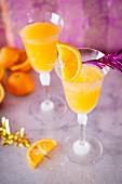 Apricot sour cocktails with orange juice