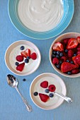 Yogurt with berries on a blue background