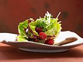 Fruity leaf salad with a raspberry dressing