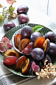 Fresh plums in a bowl on a metal plate