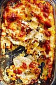 Hokkaido lasagne with ricotta (soul food)