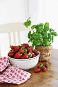 Fresh strawberries in a bowl with basil on a wooden table