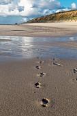 Fußspuren im Sand am Strand, Sylt, Deutschland
