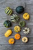 Small pumpkins (Cucurbita pepo)