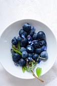 Blueberries with forget-me-not in a bowl