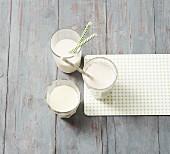 Pflanzendrinks als Milchersatz bei Laktoseintoleranz