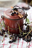 Aronia berries with an enamel pot and a cinnamon stick