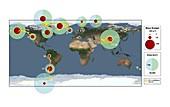 Glacier loss rates 2003-2009, global map