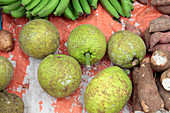 Breadfruit in market