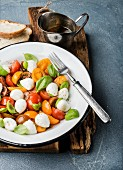Italian Caprese salad with cherry tomatoes, small mozzarella and fresh basil in white enamel plate
