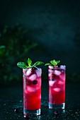 Zwei Gläser Cranberry Rum-Punch mit Minze