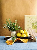 Still life with quince, herb bouquet and salt on wooden cutting board