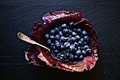 Organic blueberries served in a red cabbage leaf with white sugar on a black slate stone