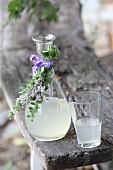 Limonade aus Orangenminze und Lavendel in Karaffe und Glas