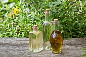 Various homemade herbal oils in bottles