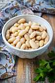 A Bowl of Cannellini Beans