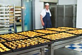 Trays of freshly baked 'pasteis de nata' (custard tarts) at Pasteis de Belem in Lisbon, Portugal