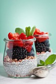 Chia seeds vanilla pudding and berries on blue background