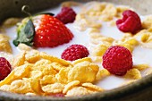 Cornflakes with milk and berries in ceramic bowl
