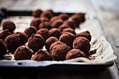 Zitrus-Schokoladentrüffel auf Backpapier und Ofenblech