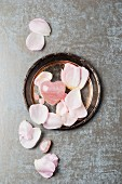 Rose quartz with rose petals on a silver plate