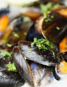 Mussels in a white wine and garlic sauce