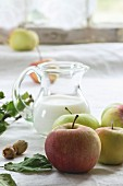 Heap of apples with leaves, hazelnuts and jug of milk over white tablecloth with window as background