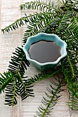 Spruce tip syrup in a small bowl