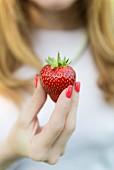 Frauenhand mit roten Fingernägeln hält eine Erdbeere
