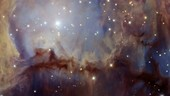 Infrared view of Orion Nebula