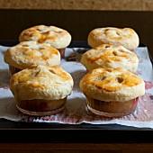 Apple and rhubarb pot pies