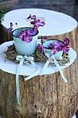 Horned violets in enamel cups with hay balls and bows on a white tree trunk surface