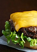 Grilled beef burger on a white bun with curly lettuce and melted cheddar cheese